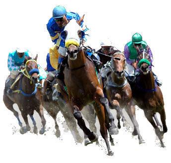 Les course hippiques ne pas manquer - Dessin cheval de course ...